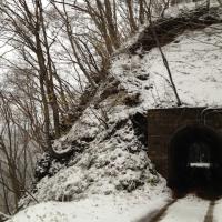 直根森林軌道跡第一隧道w640
