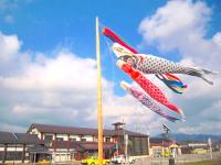 こいのぼりと矢島駅