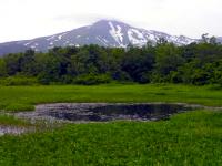 湿原と鳥海山